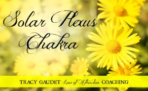 The 7 Chakras – Solar Plexus –