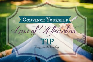 Law of Attraction Tip #15 Convince Yourself