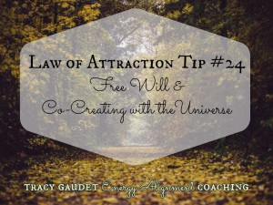Law of Attraction Tip #24 Free Will & Co-Creating with the Universe