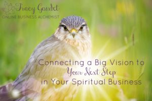 Connecting a Big Vision to Your Next Step in Your Spiritual Business