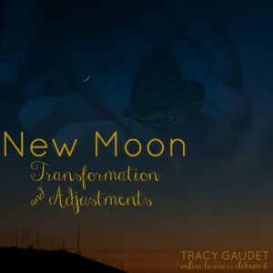 Prep for the New Moon!