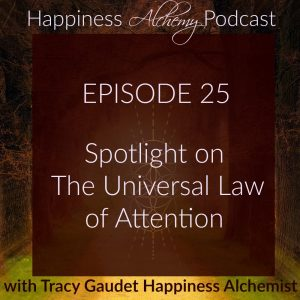 Beyond Law of Attraction, Spotlight on The Universal Law of Attention