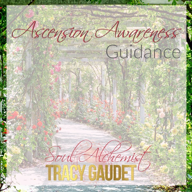 ascension awareness guidance